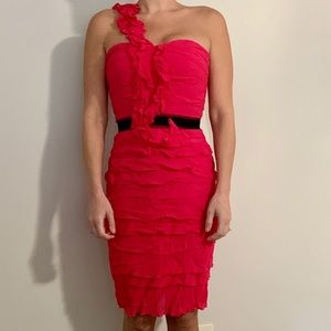 BCBG silk cocktail dress.